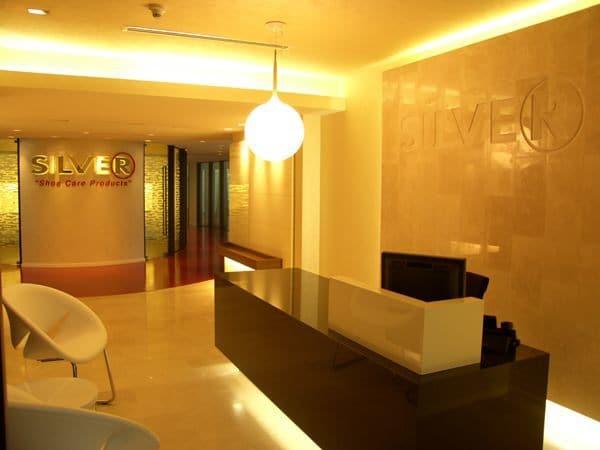 silver-ofisi-11