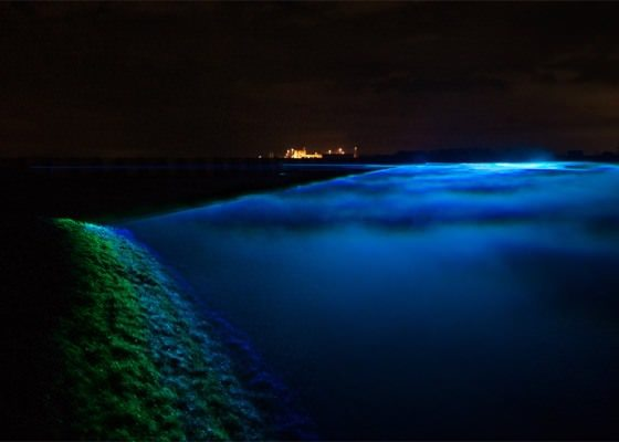 Waterlicht4
